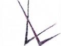 Calligraphiques8.
